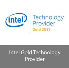 Intel Technology Provider Gold Logo